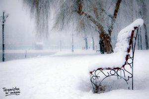 Foto: Cristian Grigore - Zăpadă pe Lacul Chindia din Târgoviște