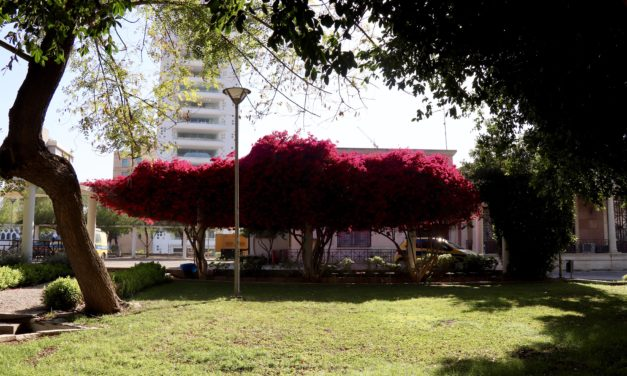 Nicosia, o capitală divizată
