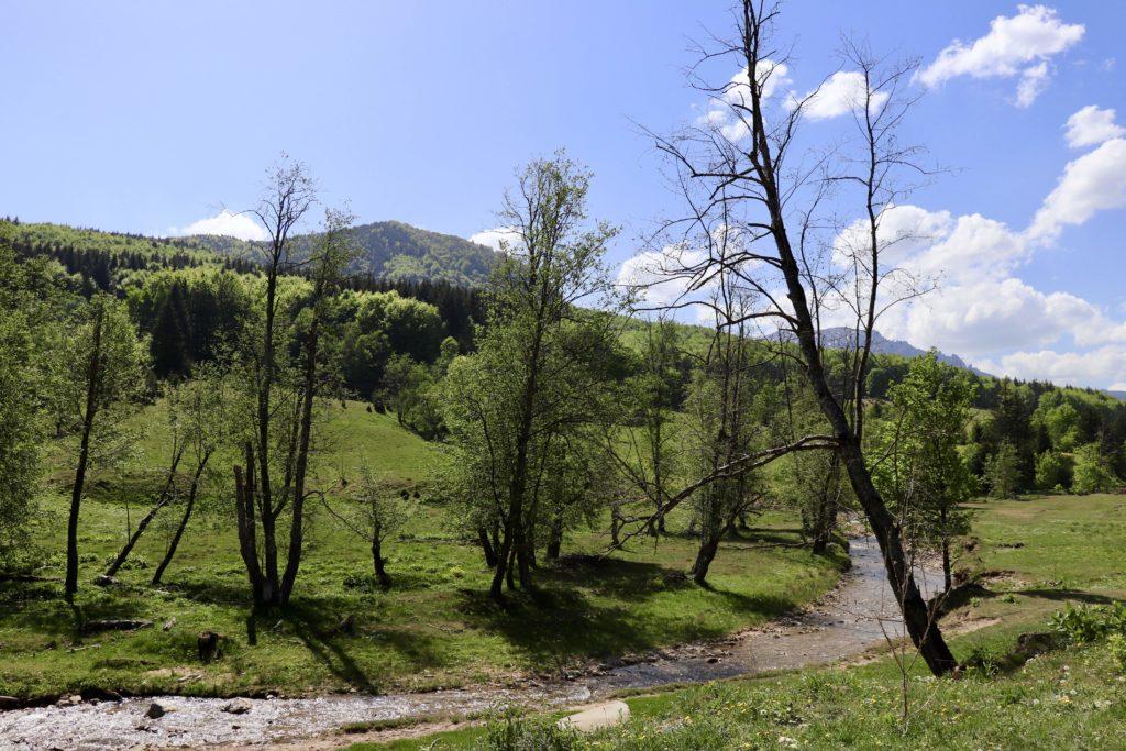 România - Pastel Chalet