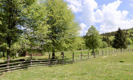 Pastel Chalet – povești cu și despre oameni, locuri și natură