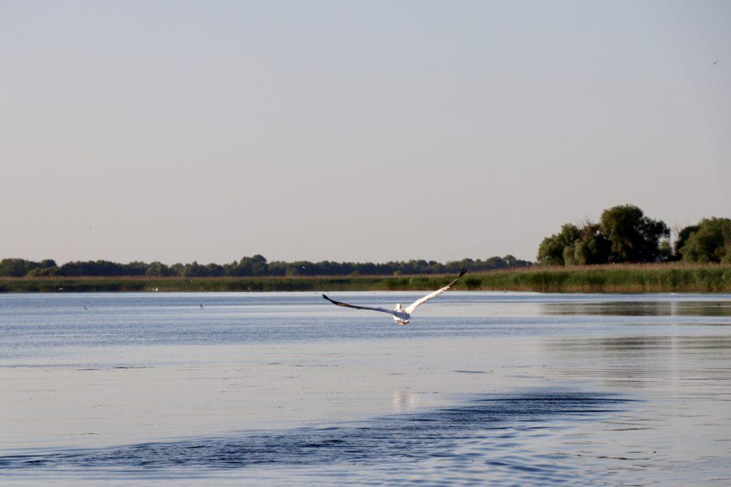 Delta Dunării