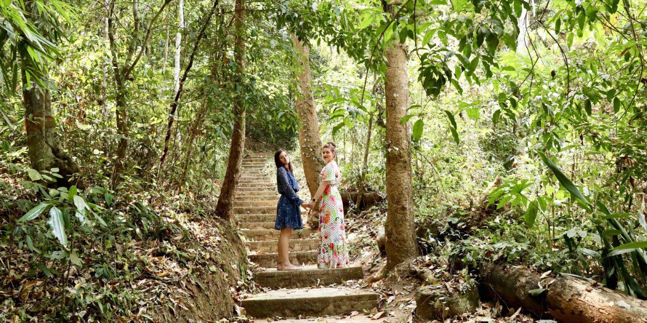 Am fugit de soare până am ajuns în mijlocul pădurii tropicale