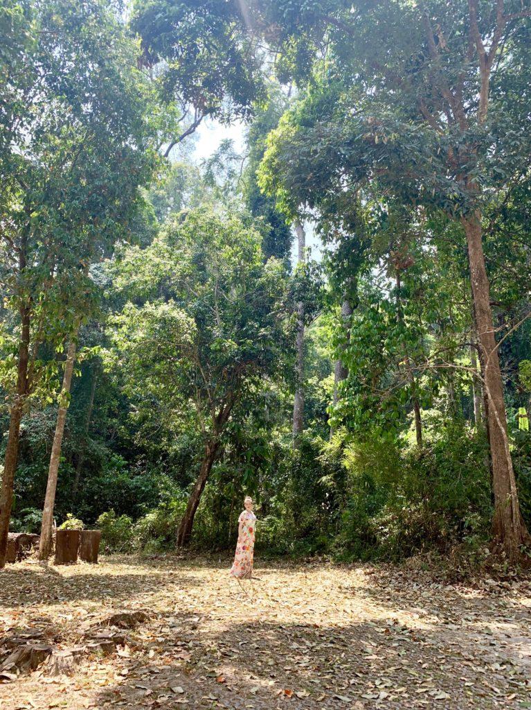 Cascadele Montha Than, Chiang Mai