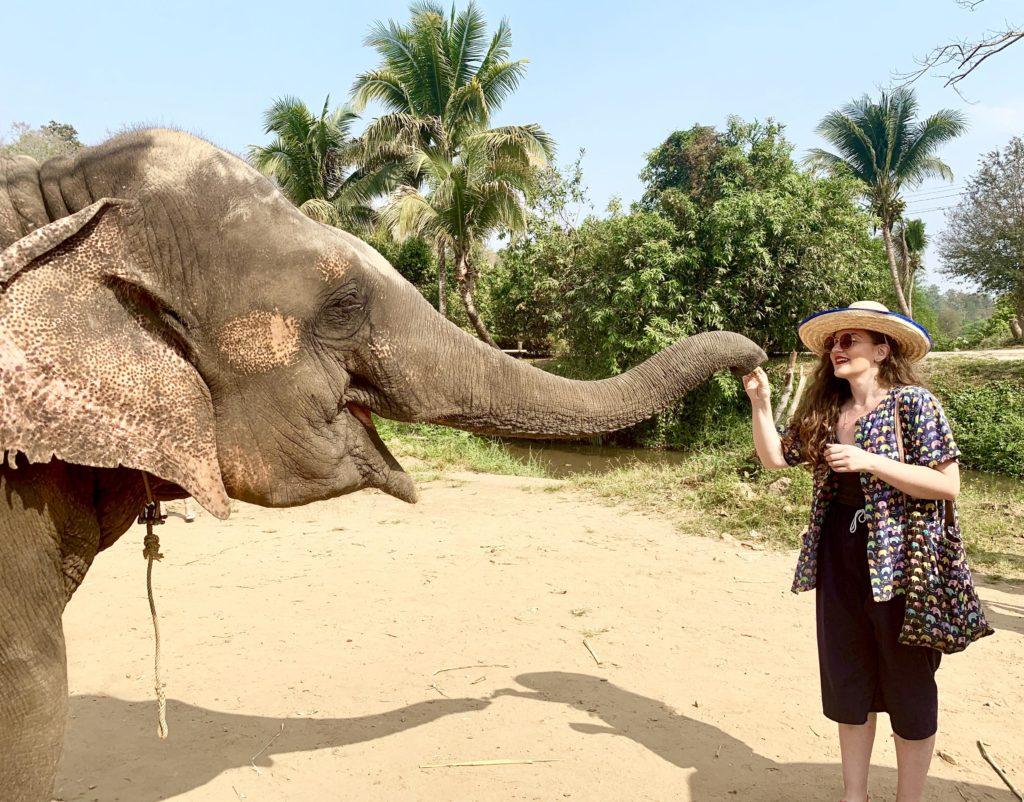 Sanctuar elefanți, Chiang Mai