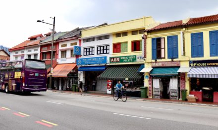 FOTO: Ce ascunde Little India din Singapore