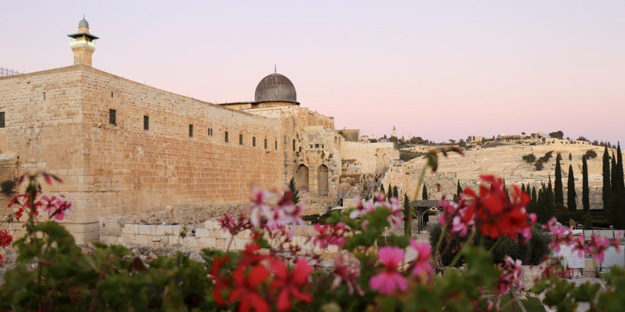 Top 20 cele mai frumoase fotografii din Israel