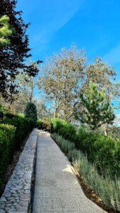 I Giardini di Zoe, Hunedoara