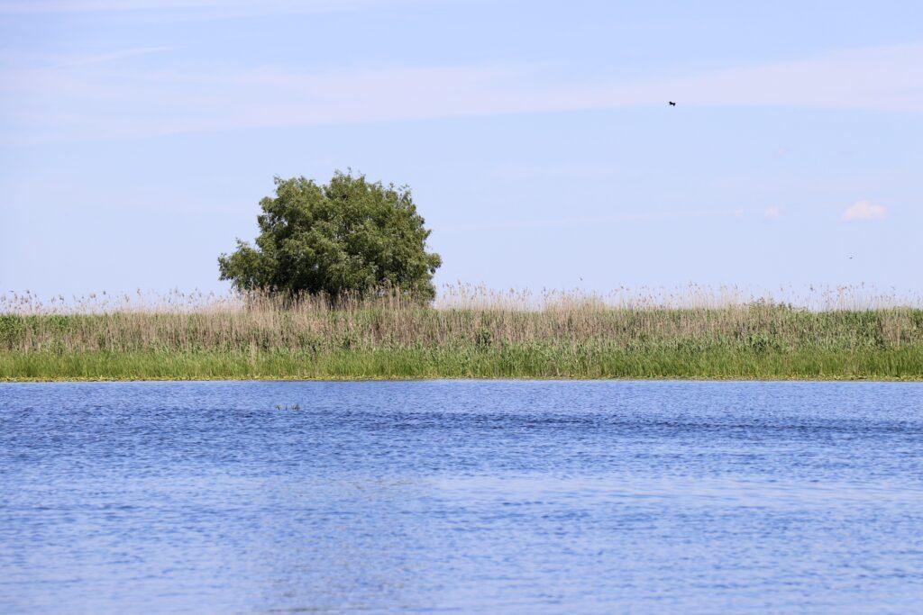 Delta Dunării, România
