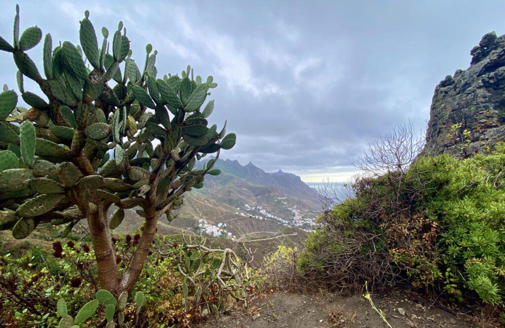 Parcul Național Anaga, Tenerife