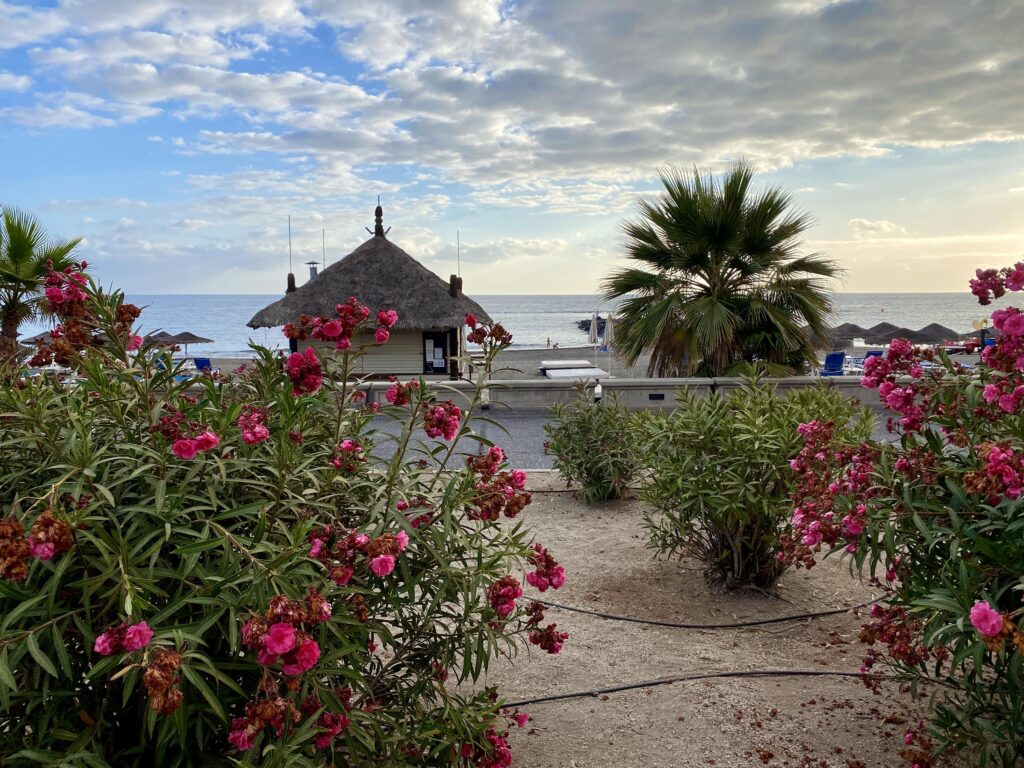 Playa Fanabe, Tenerife
